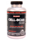 Acides aminés CELL-BCAA