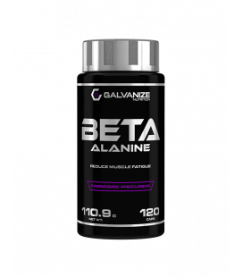 Acide aminé BETA ALANINE